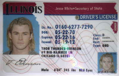 new resident drivers license illinois